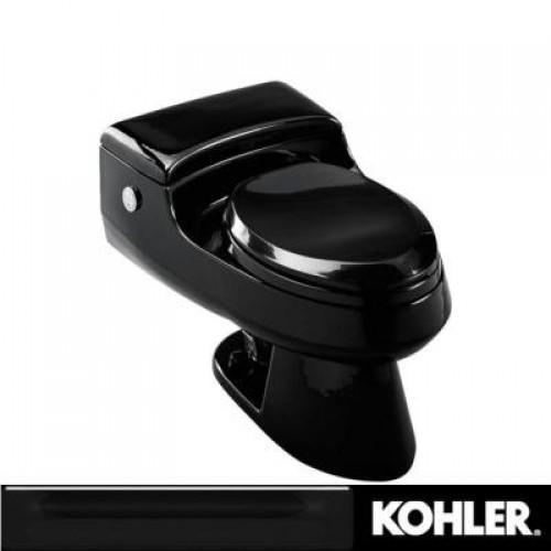 Kohler San Raphael Power Lite Toilets   DiggersList